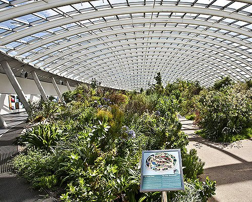 The Great Glasshouse, NBGW